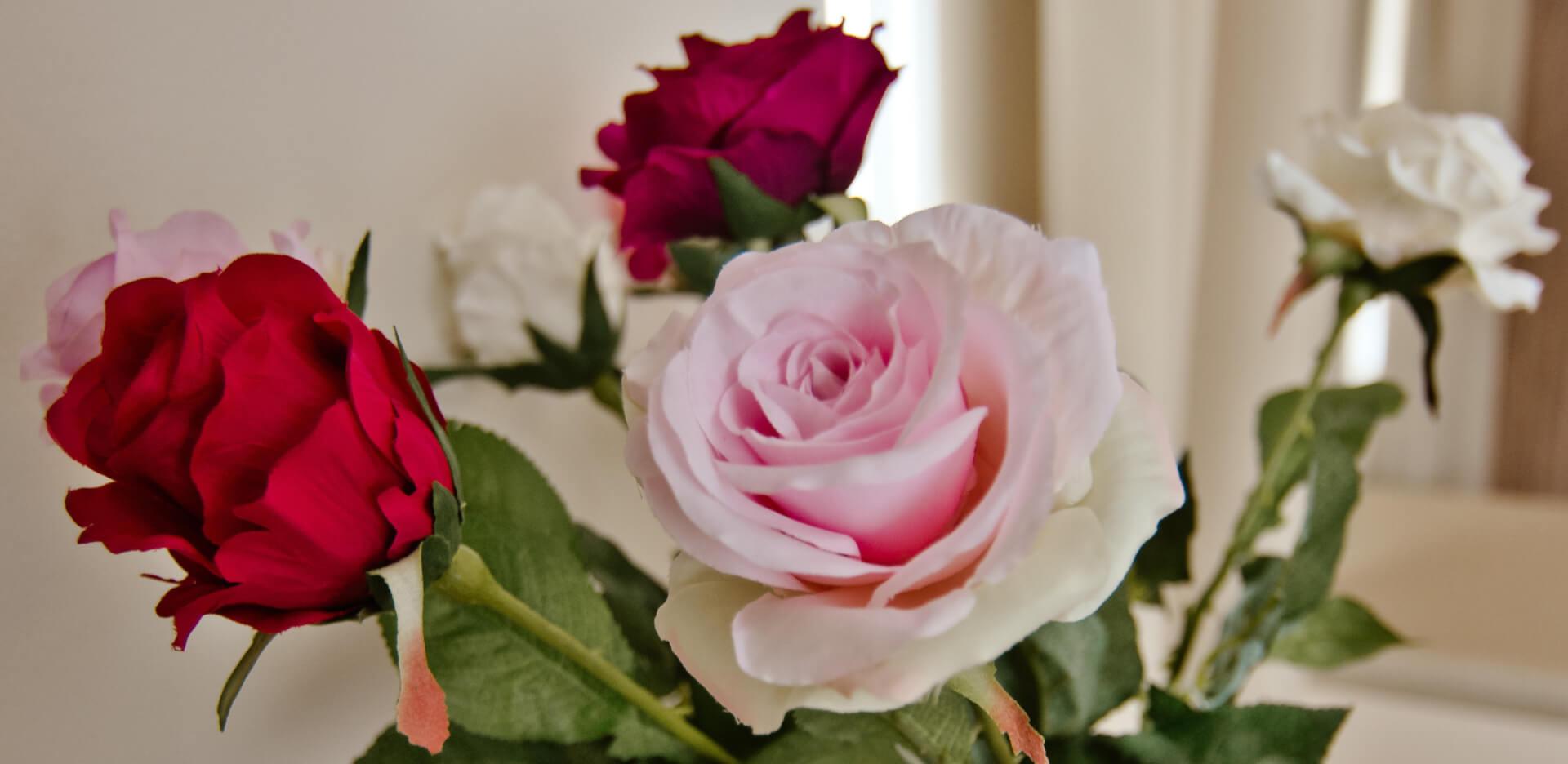 Cvijeće/Flowers/ Fiori